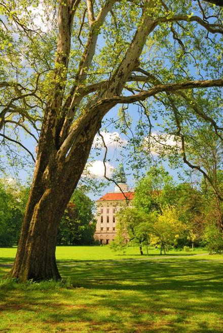 kromeris-slottspark.jpg