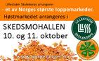 Høstens loppemarked 10.-11. oktober