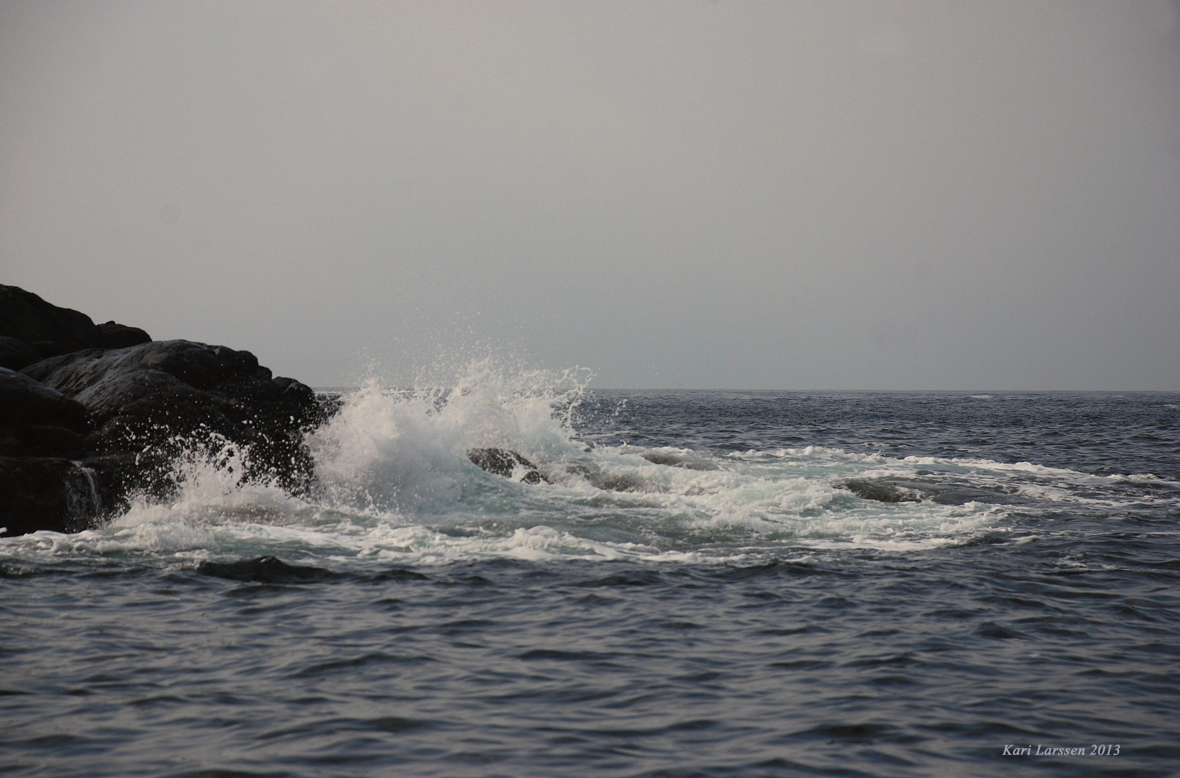 havbrus.jpg