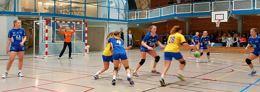 3. div SHK-Strindheim 23-13 (12-5)