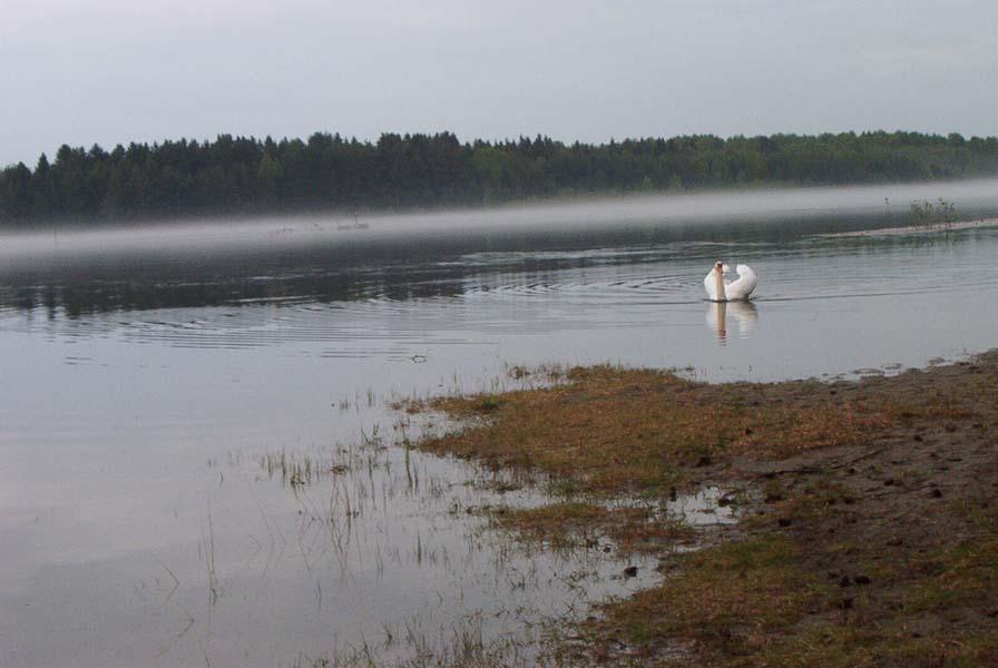 Nordisk minitreff 2003 - 39.jpg