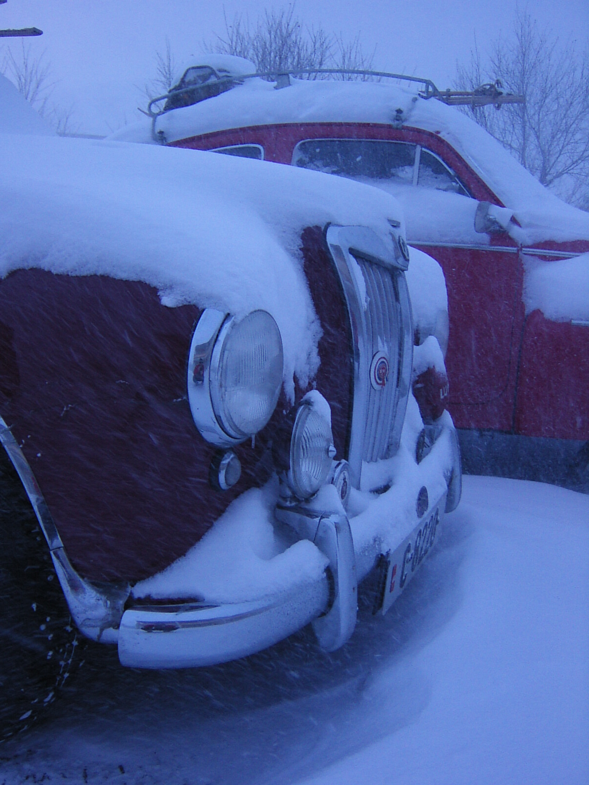 VINTERPRØVEN 2006 vinterlig MGfront.jpg