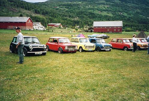 Sommertreff 1994 på Gol
