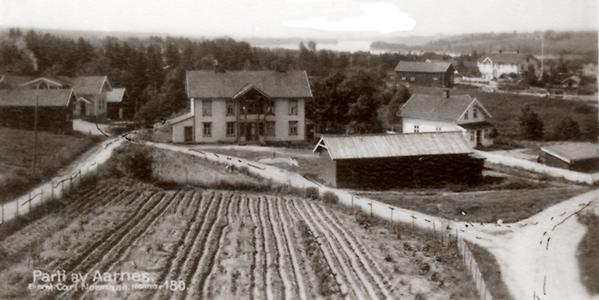 Parti av Aarnes 1915