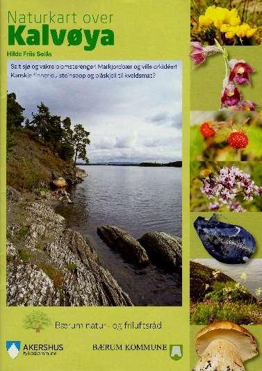 Forside Kalvøya.jpg