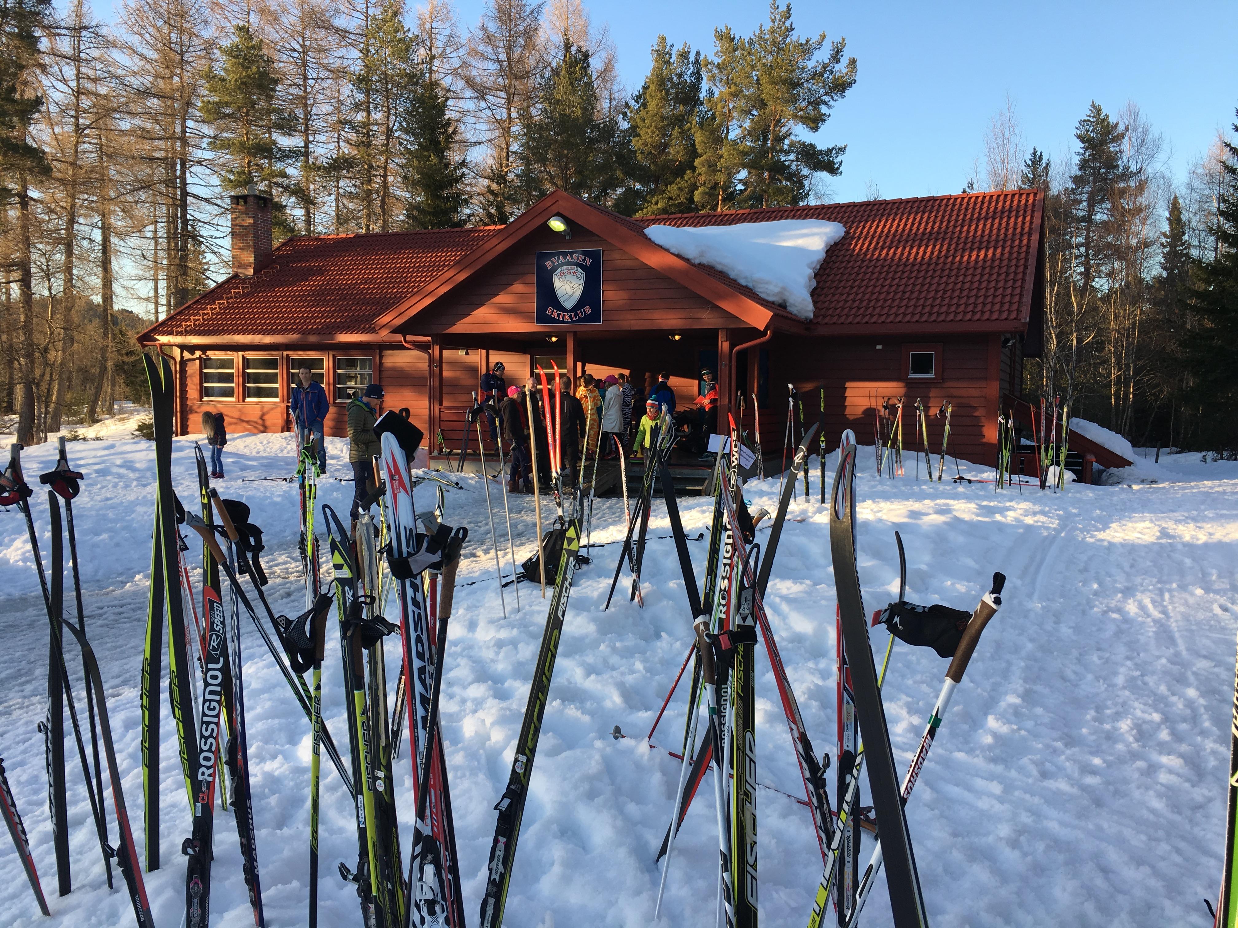 hytte med skiskog.JPG