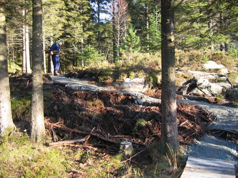 Stien fra BT buen ved Søndre Kamvei til Skomakerdi