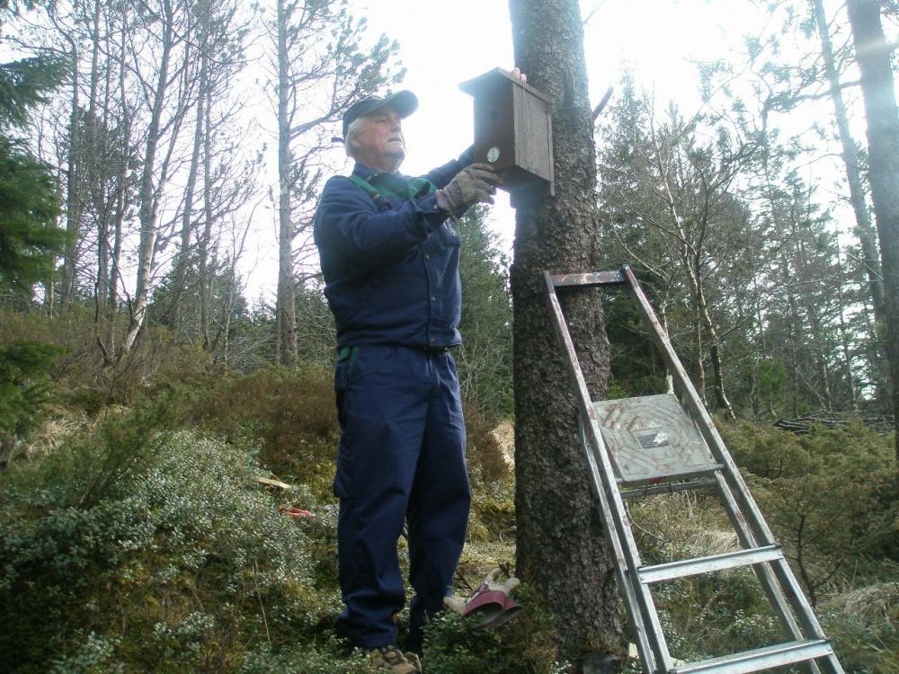 Den årlige rensingen av fuglekassene 9.april.jpg