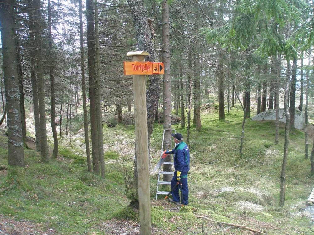 Kvisting ved Torrfjellet 9.april.jpg