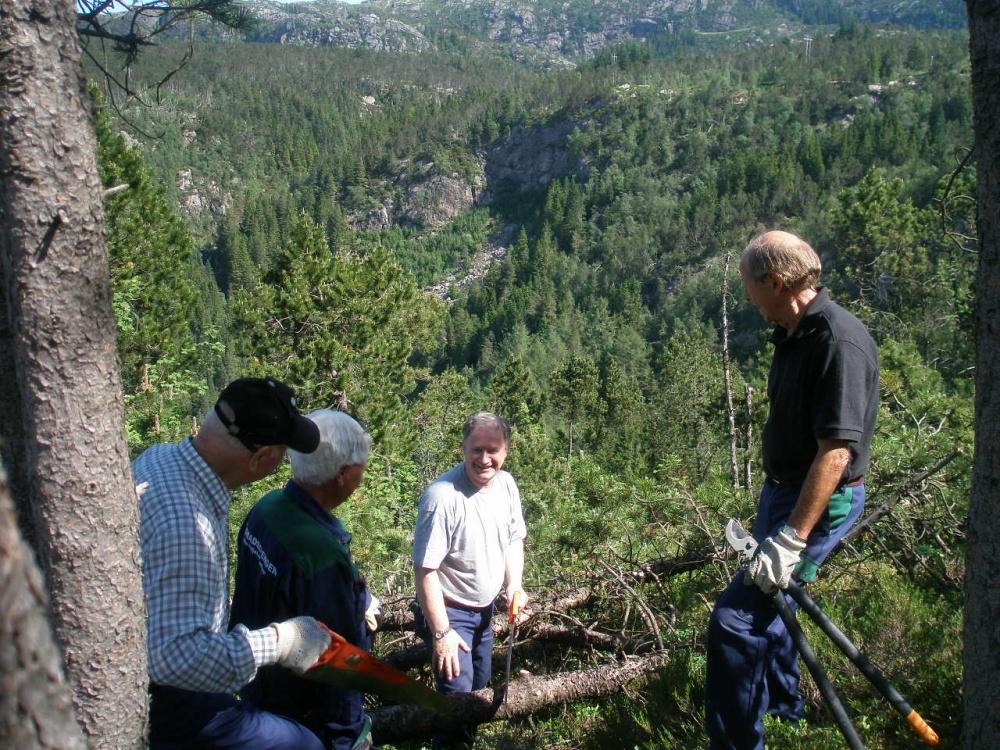 Ny ryddet utsikt mot Skredderdalen.jpg