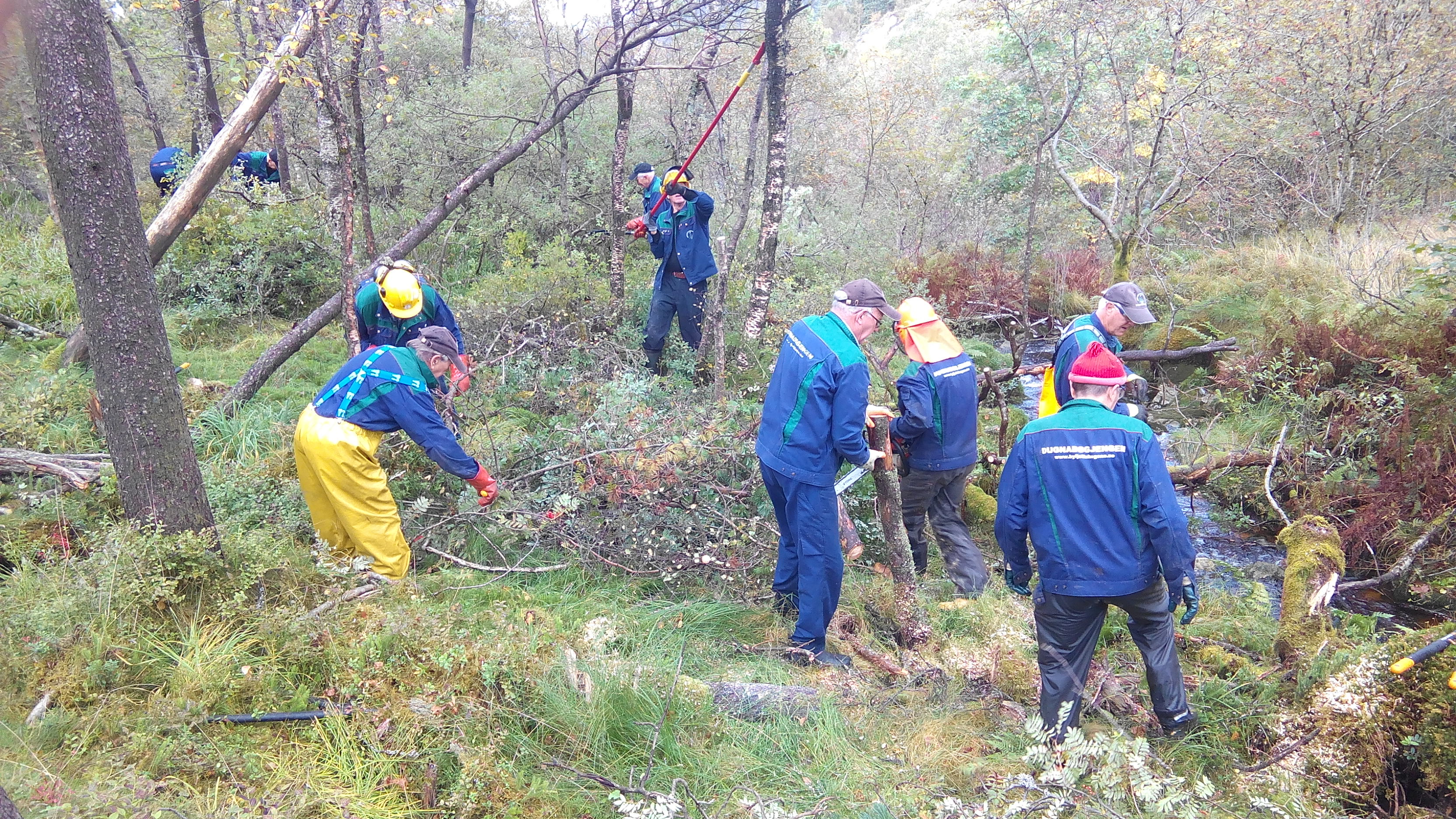 008  Tungt skogsarbeid ved Storevannet.jpg