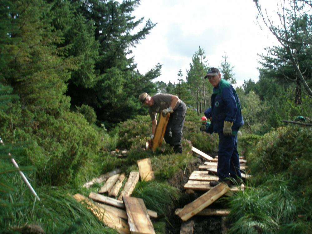 28.aug - 2- Stien til Fjellhytten rustes opp..jpg