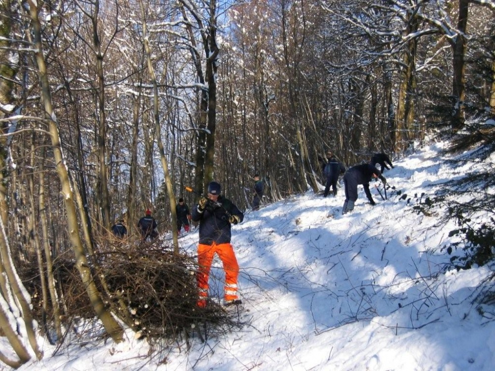 Rydding mellom Tippetue og Fjellveien 11.feb.-4-jp
