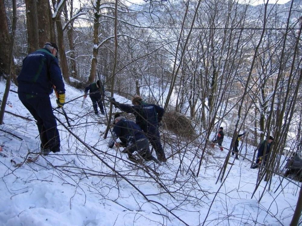Rydding mellom Tippetue og Fjellveien 11.feb.-5-jp
