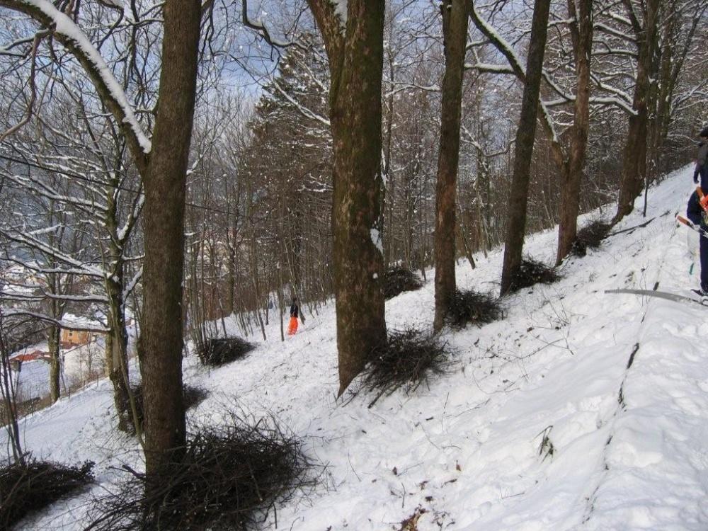 Rydding mellom Tippetue og Fjellveien 11.feb.jpg