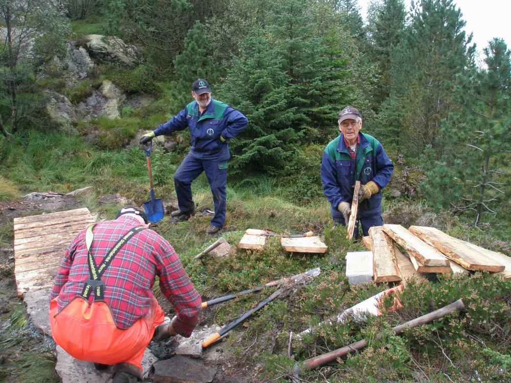 Stien til Fjellhytten 2.sept. - 2.jpg