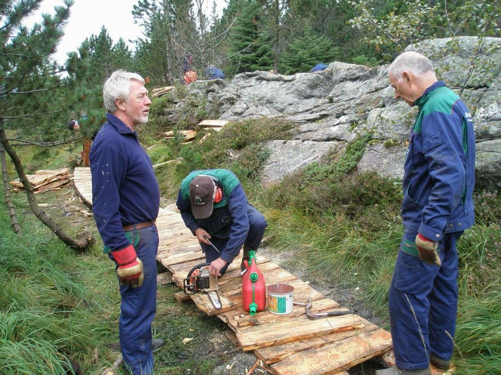 Stien til Fjellhytten 2.sept.jpg