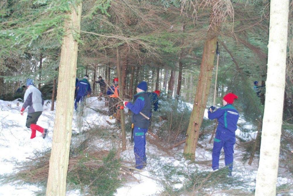 Rydding av skog sør for skomakerdiket 11.feb.(E.In