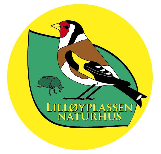Aktiviteter på Lilløyplassen naturhus i høst