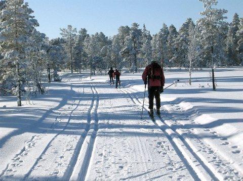 l-ski_pa_ballerud.jpg