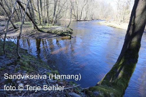 Album som viser tverrsnitt av Bærums natur. For rullering på hjemmesidens forside.