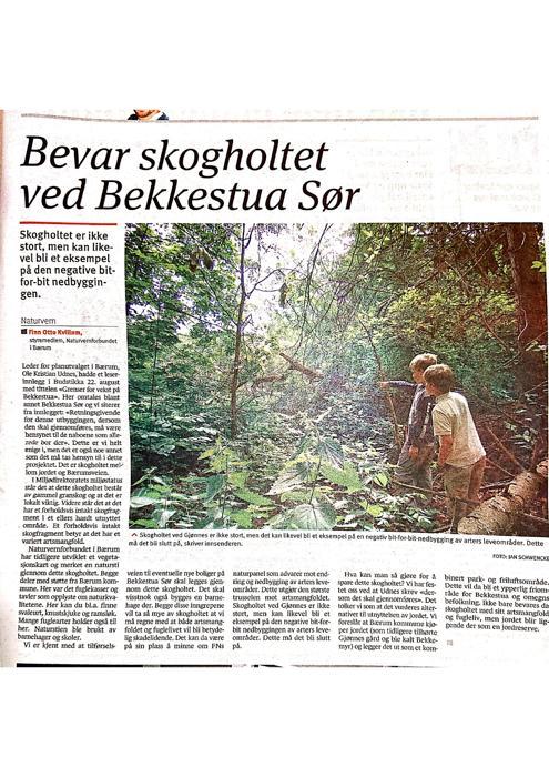 skogholt Bekkestua sør-page-001.jpg