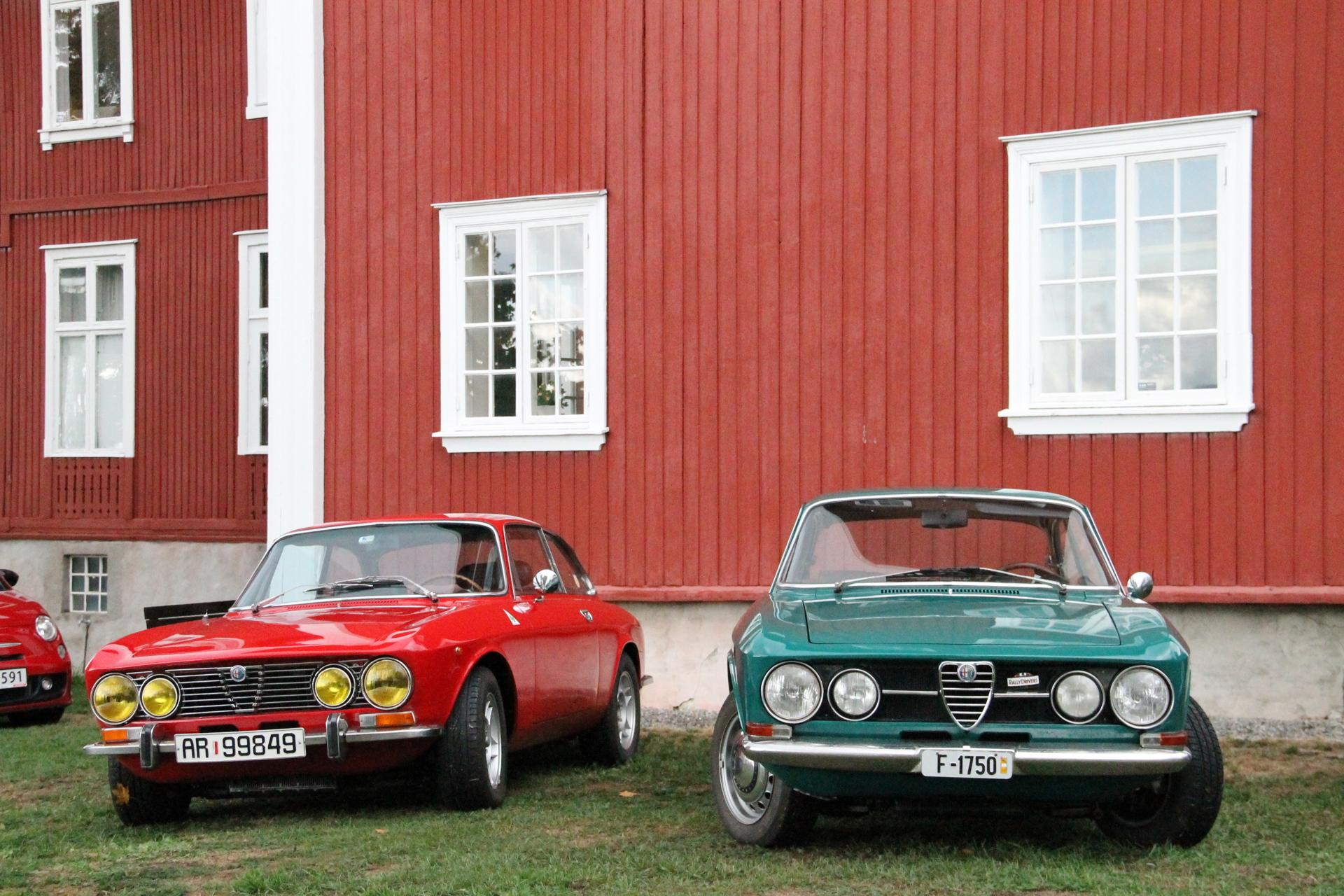 Bertone rød grønn (2).JPG