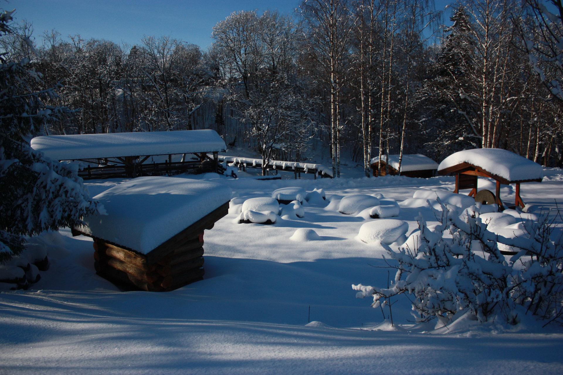Mølleparken om vinteren.JPG