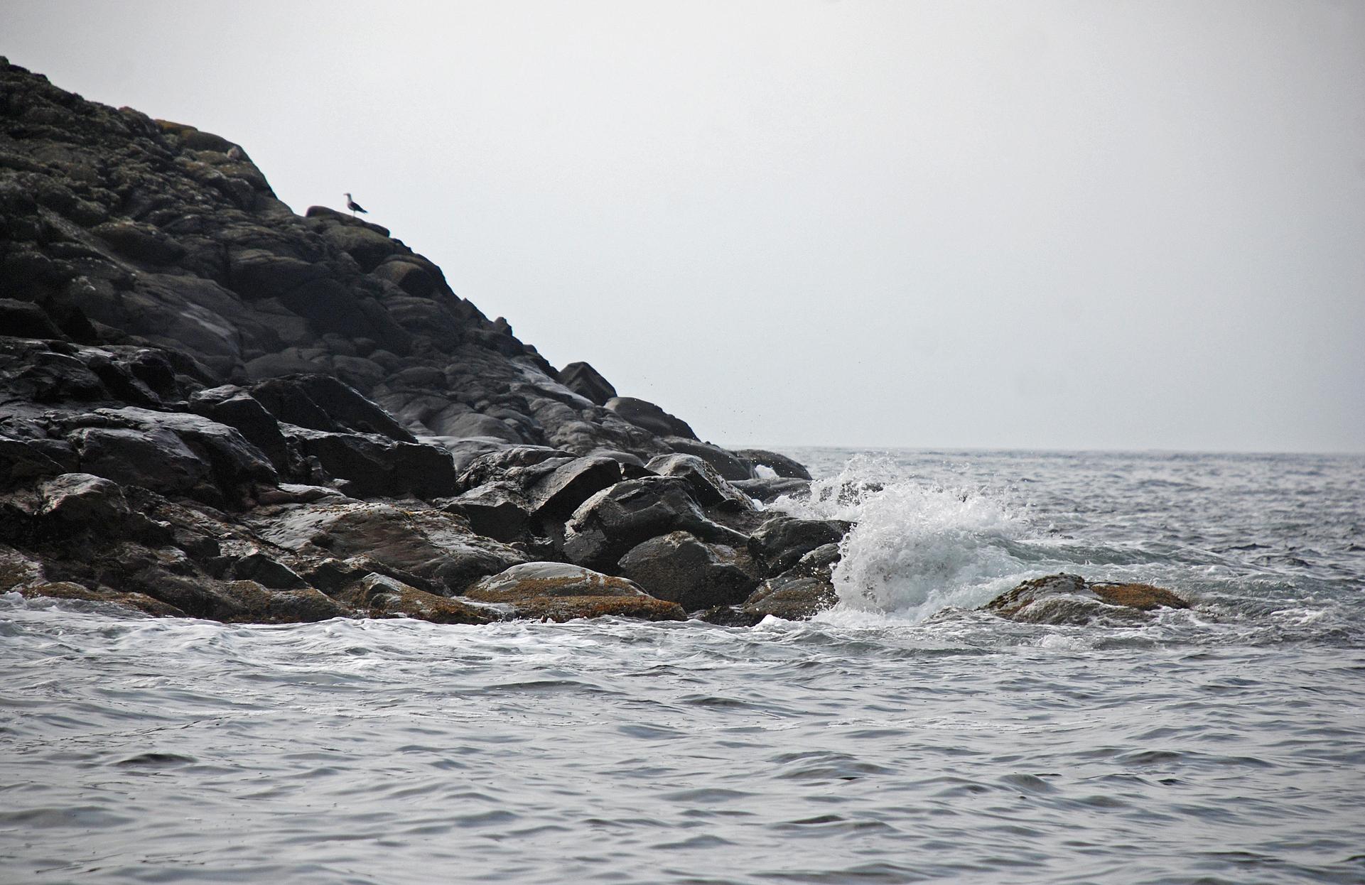 havbrus1.jpg