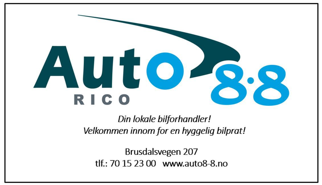 Auto 88 Rico.JPG