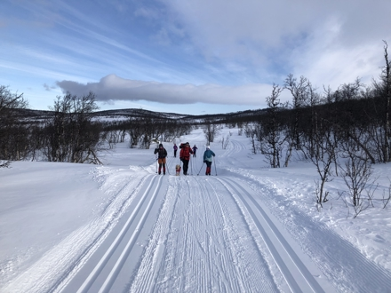 Et fint mål for en eller flere skiturer kan være Grillhytta ved Helinvegen. For rett ved Helinvegen har Ellingbø, Thune og Helin Vestside Grunneigarlag satt opp ei Grillhytte. Helinvegen er ikke vinterbrøyta forbi grillhytta, så den er midt i vinterparadiset. Grillhytta ligger helt inntil Grindafjell løypelag sine løyper, en liten avstikker på ca 2 km fra runden rundt Nordre Syndin i retning mot Helin og Grindatjernet. Grillhytta er ulåst og til fri benyttelse. Det koster 50,- kr for bruk og ved, som betales til grunneierlaget på Vipps. Informasjon om betaling henger i grillhytta. Grillhytta er et flott turmål som egner seg fint de dagene det ikke frister å gå på topptur. Syndinposten anbefaler en tur til grillhytta, og oppfordrer alle til å forlate den minst like ryddig og fin som da dere kom. Og husk å vipps penger for bruk og ved!