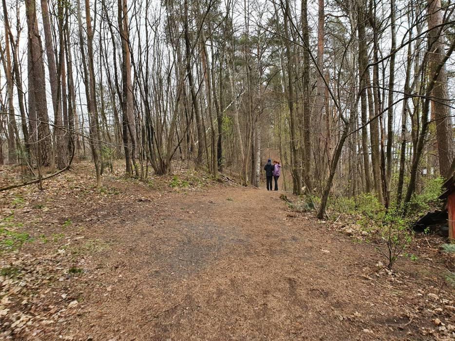 Midt i boligstrøket finner vi denne skogsidyllen på den 1,3 km lange Skallum-runden