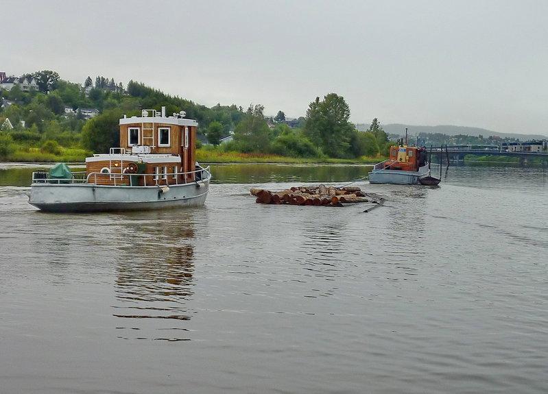 flote5.jpg