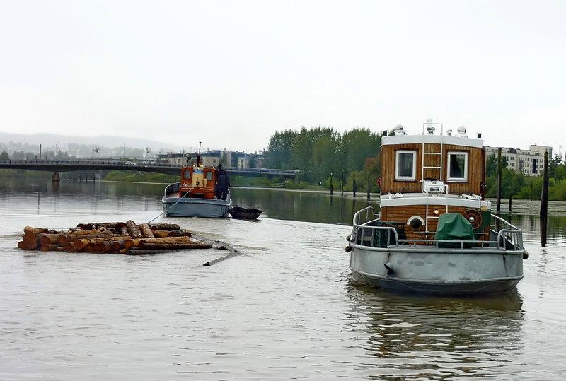 flote8.jpg