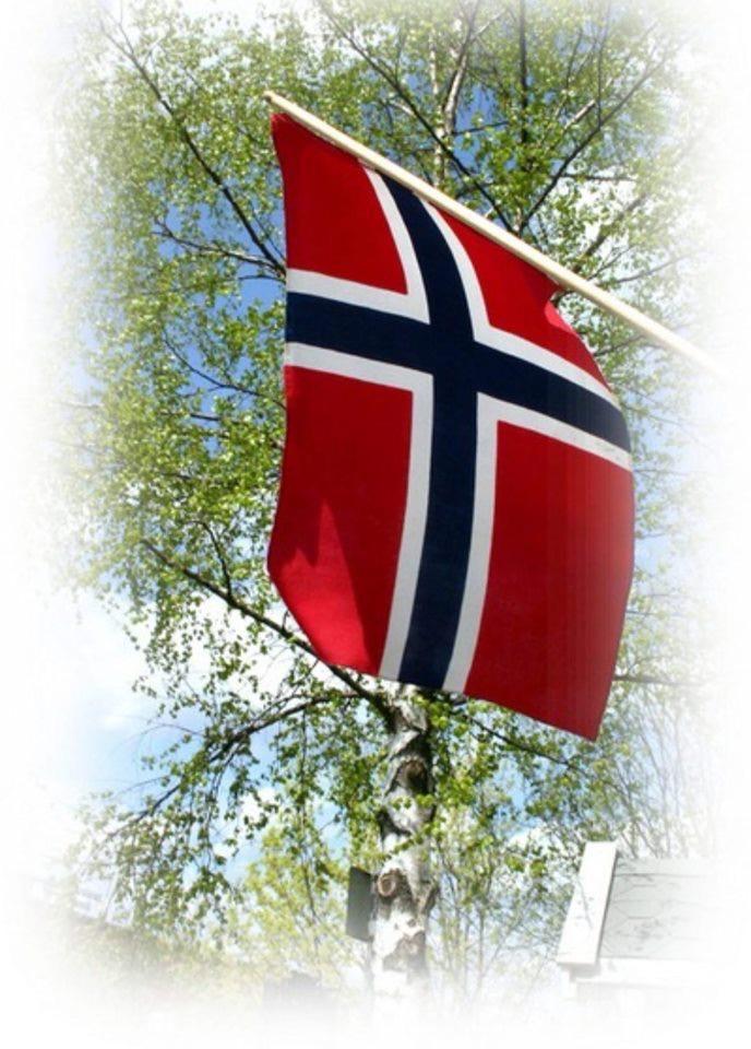 NORSK FLAGG.JPG