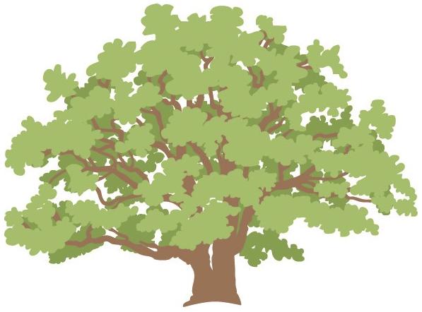 Bærum Natur- og friluftsråd - logo.PNG