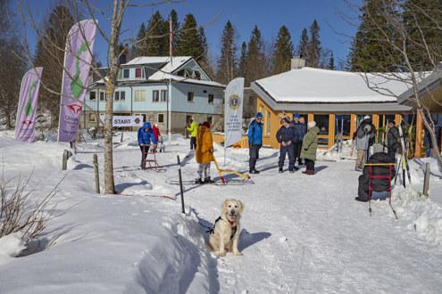 Fra de tradisjonelle vinterlekene vi arrangerer på Jøssåsen. Foto: Odd-Rune Wang