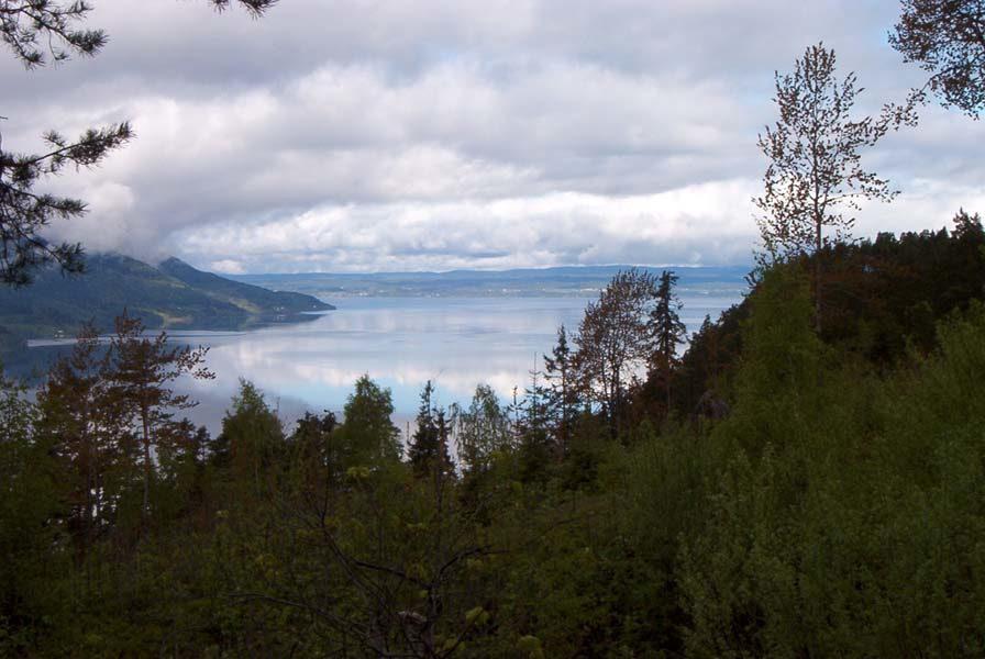 Nordisk minitreff 2003 - 48.jpg