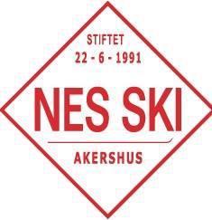 Nes ski.jpg
