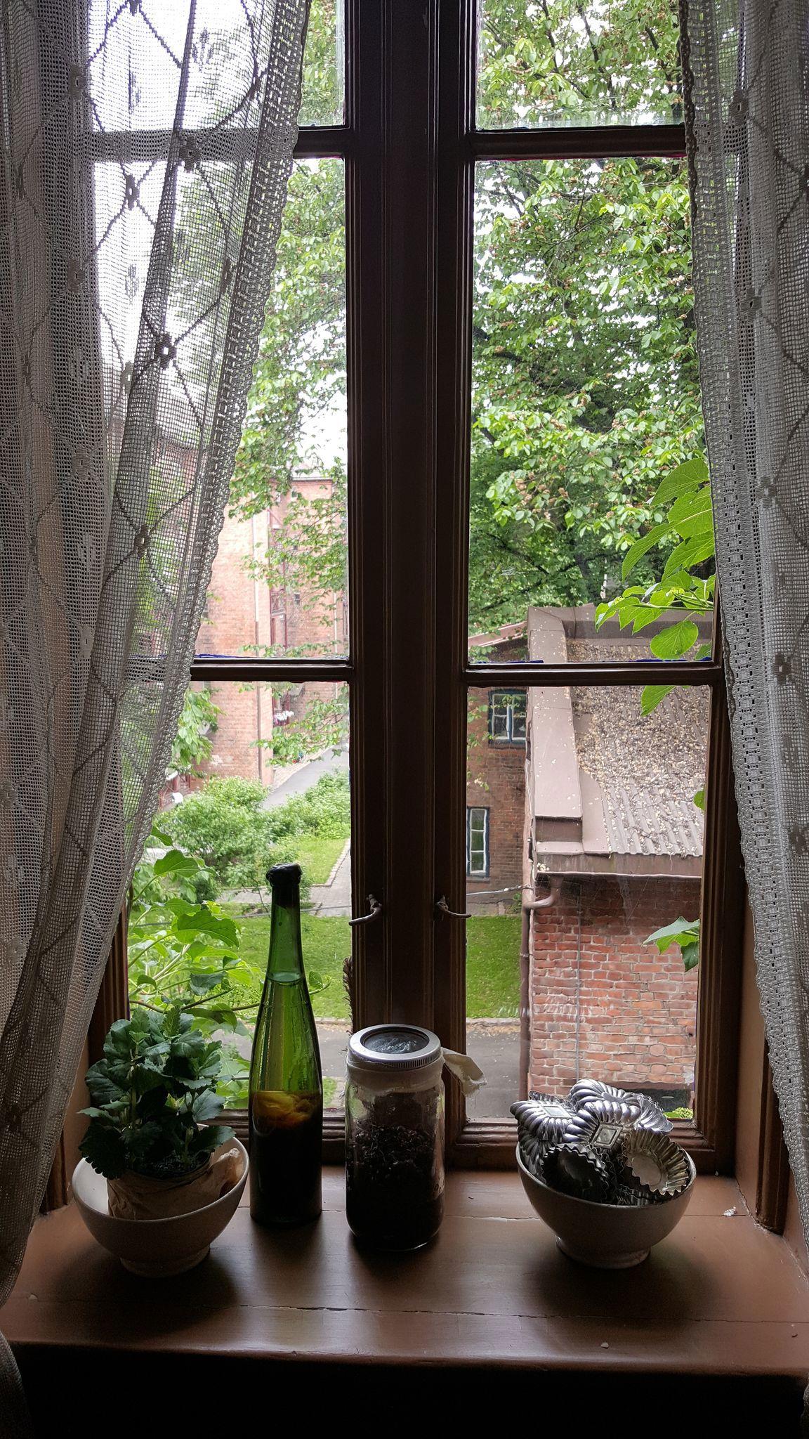 Utsikt til bakgården.jpeg