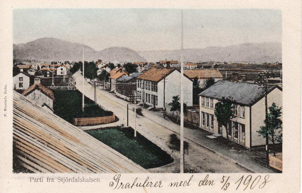 Parti fra Stjørdalshalsen 1908.jpg