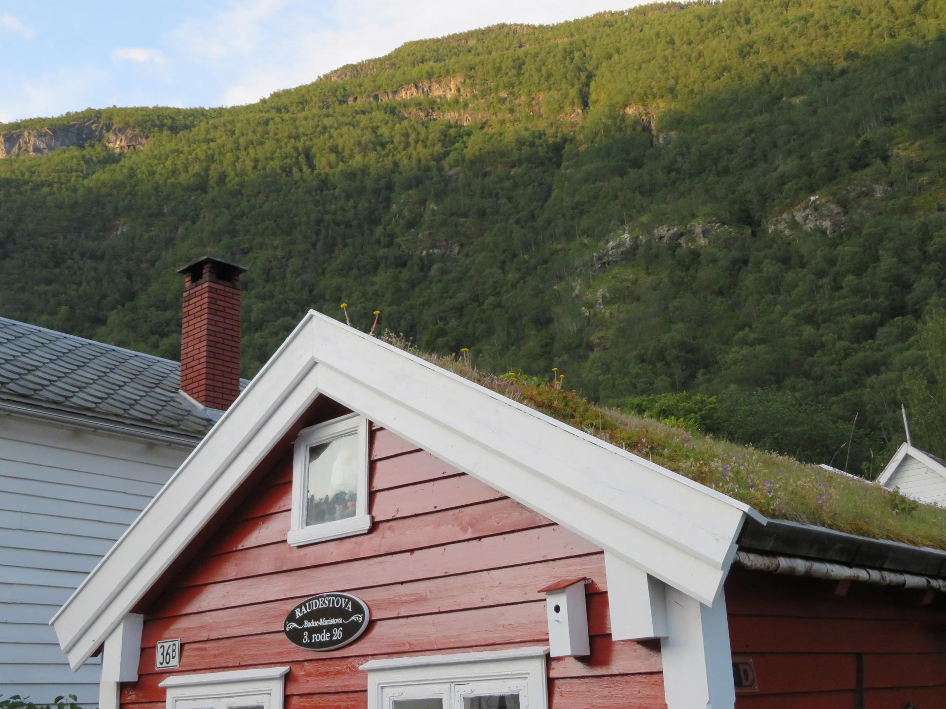 Øyragata i Lærdal (9).JPG