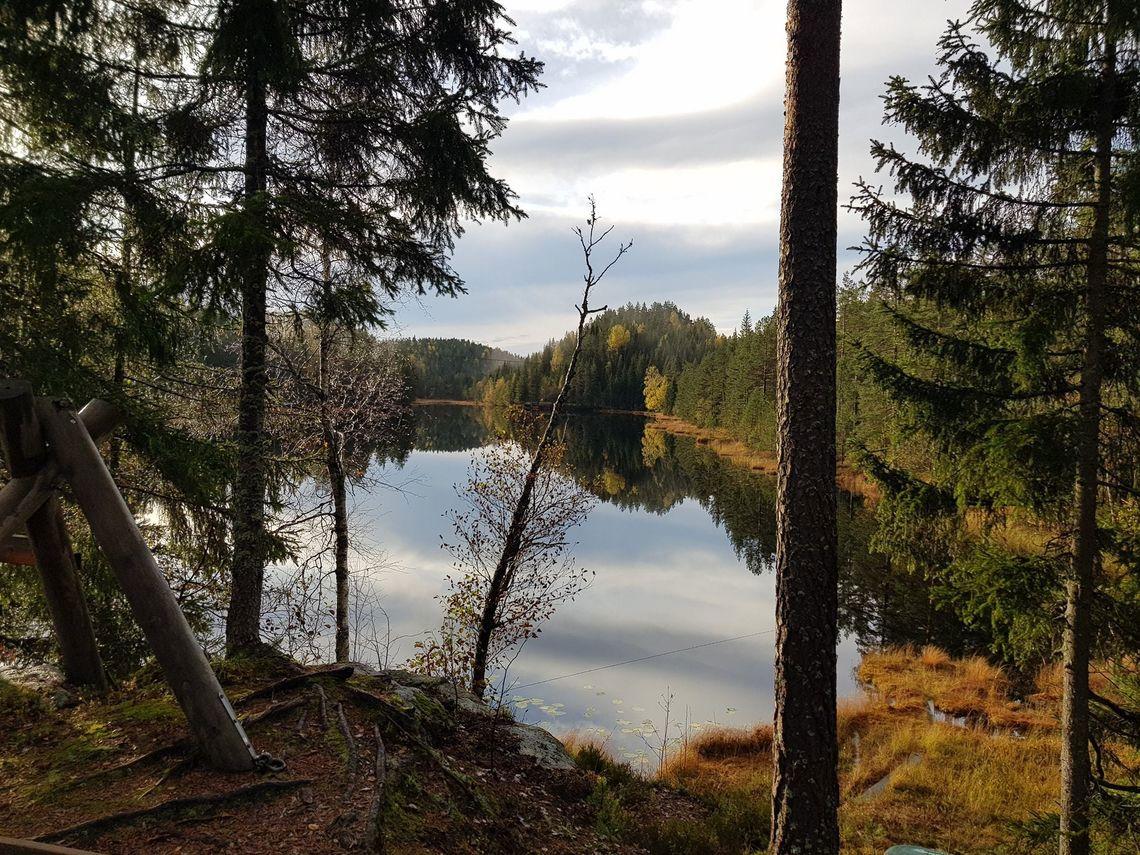 Svarstad_oktober_2020_Foto_Ole_Jacob_02.jpg