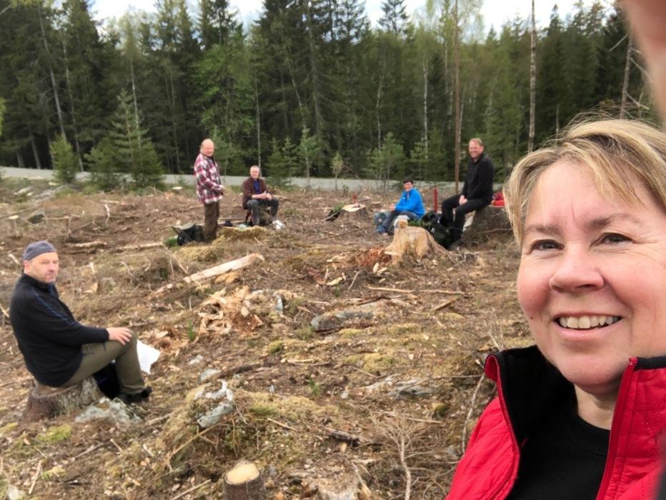 Skogplanting 4.jpg