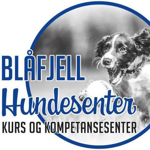 Blåfjell hundesenter.jpg