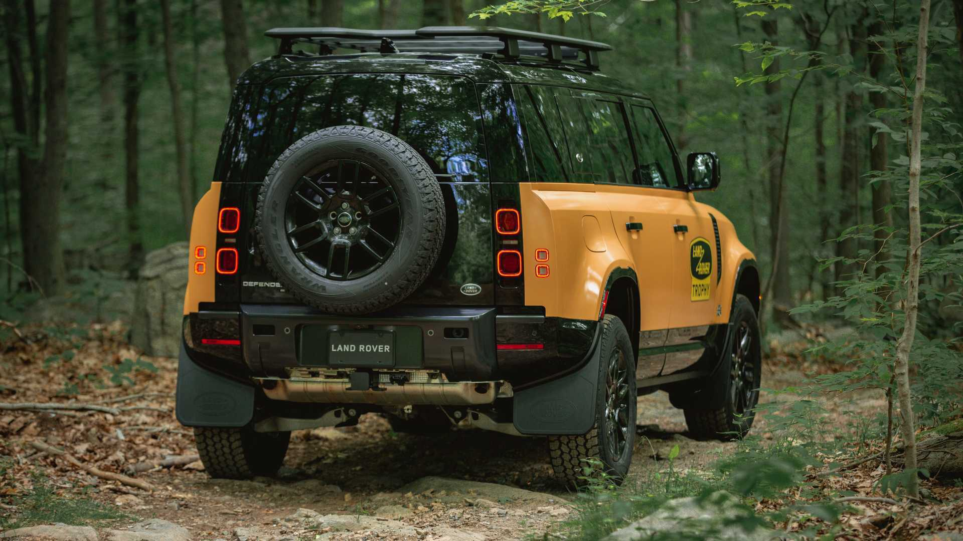 land-rover-defender-trophy-edition-rear-angle.jpg