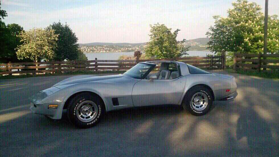 193-1981 Chevrolet Corvette C3 01. Eier- medlem 19