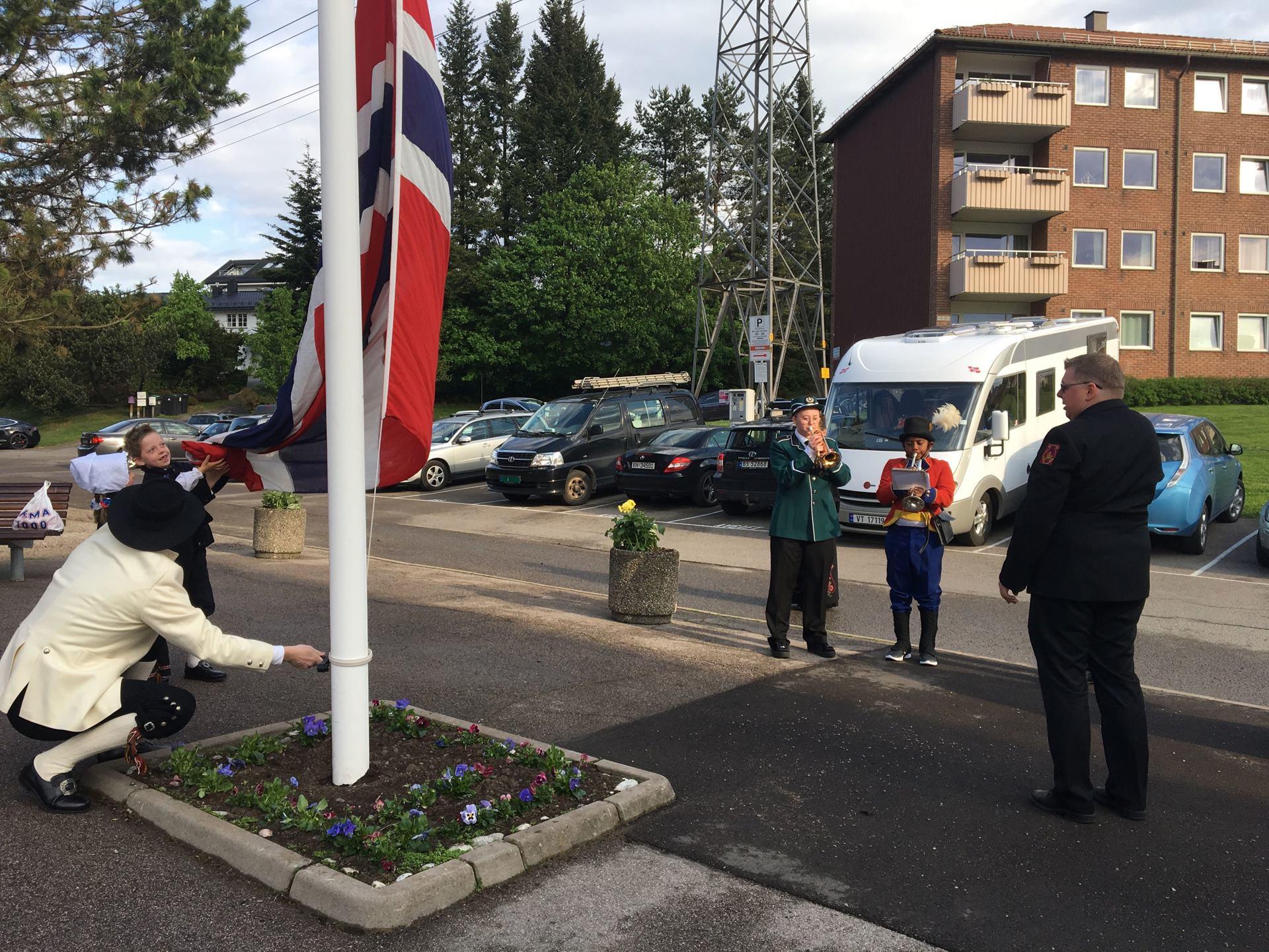 Flaggheis i Bjerkedalen Borettslag.jpg